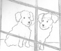 Two puppies in a window