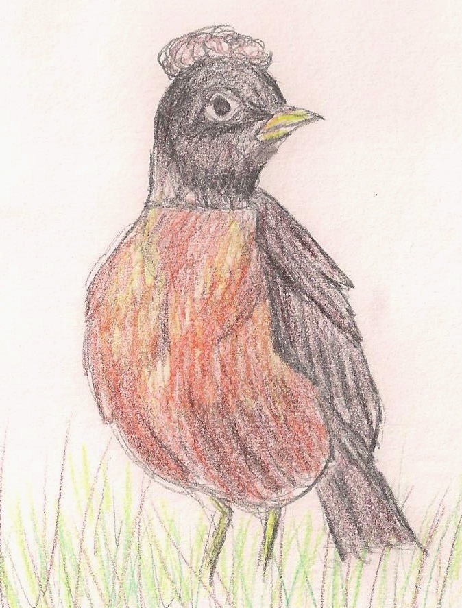 Robin Faux Hawk 2