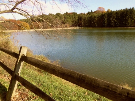 Lake with split rail fence.