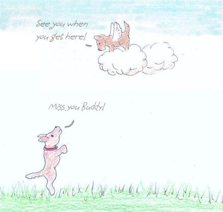 Geordie misses his friend who has passed