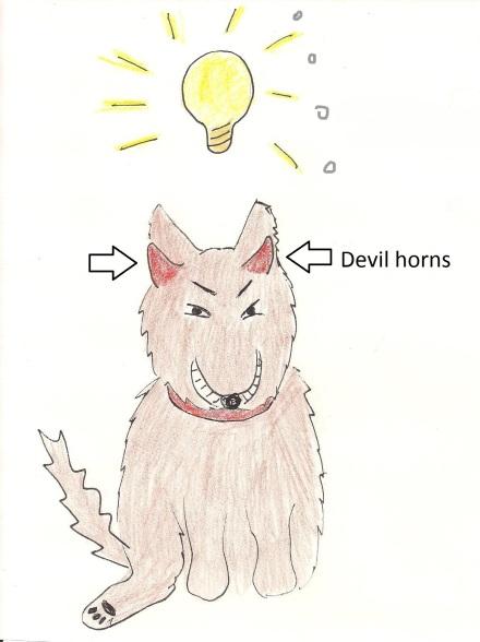 Little dog gets evil idea.
