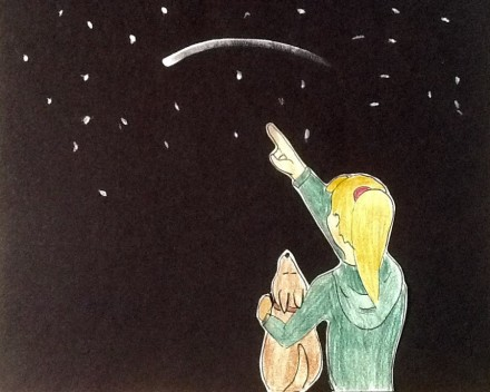 Woman and dog watch meteor shower.