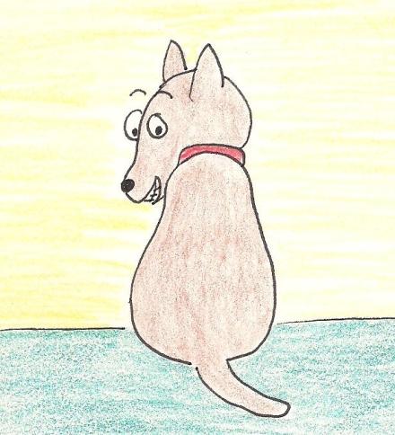 Little dog looks over his shoulder.
