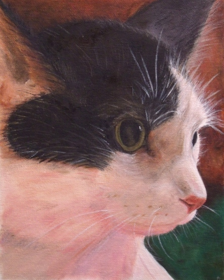 Oil painting of black and white cat.
