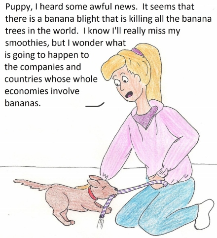 Puppy, I heard some awful news. It seems that there is a banana blight that is killing all the banana trees in the world. I know I will really miss my smoothies, but I wonder what is going to happen to the companies and countries whose whole economies involve bananas.
