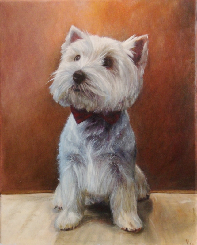 Oil Painting of Westie lad.