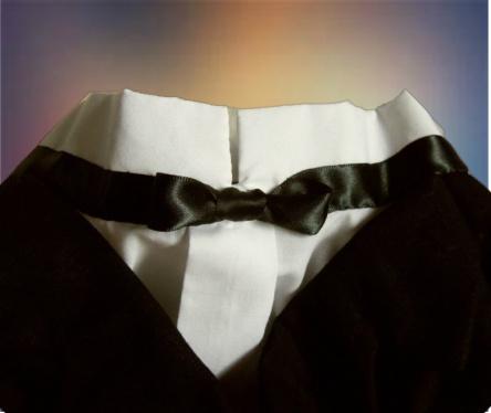 Tuxedo Kilt for Dogs, collar close up.