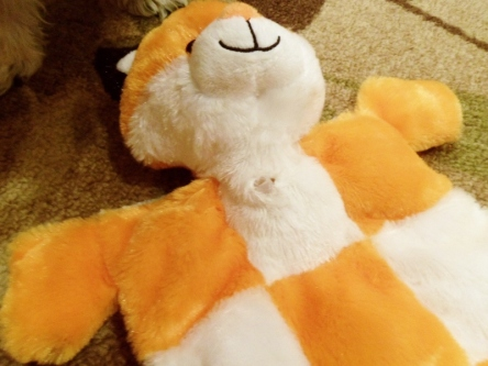 Stoma fox stuffed animal.