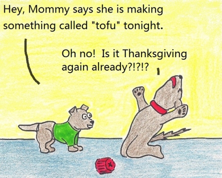"Hey, Mommy says she is making something called ""tofu"" tonight. Oh no! Is it Thanksgiving again already?!?!?"
