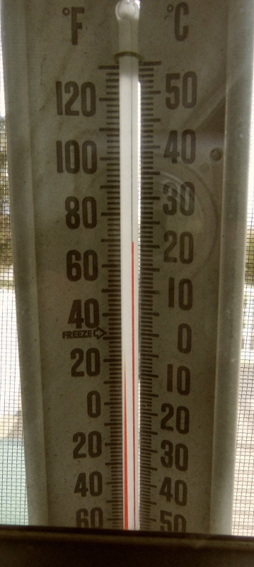 Thermometer showing seventy degree temperatures in early January.