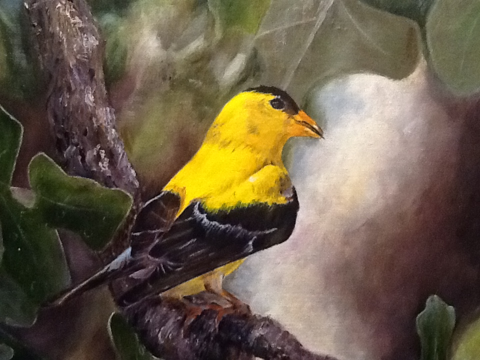 Oil painting of male Goldfinch