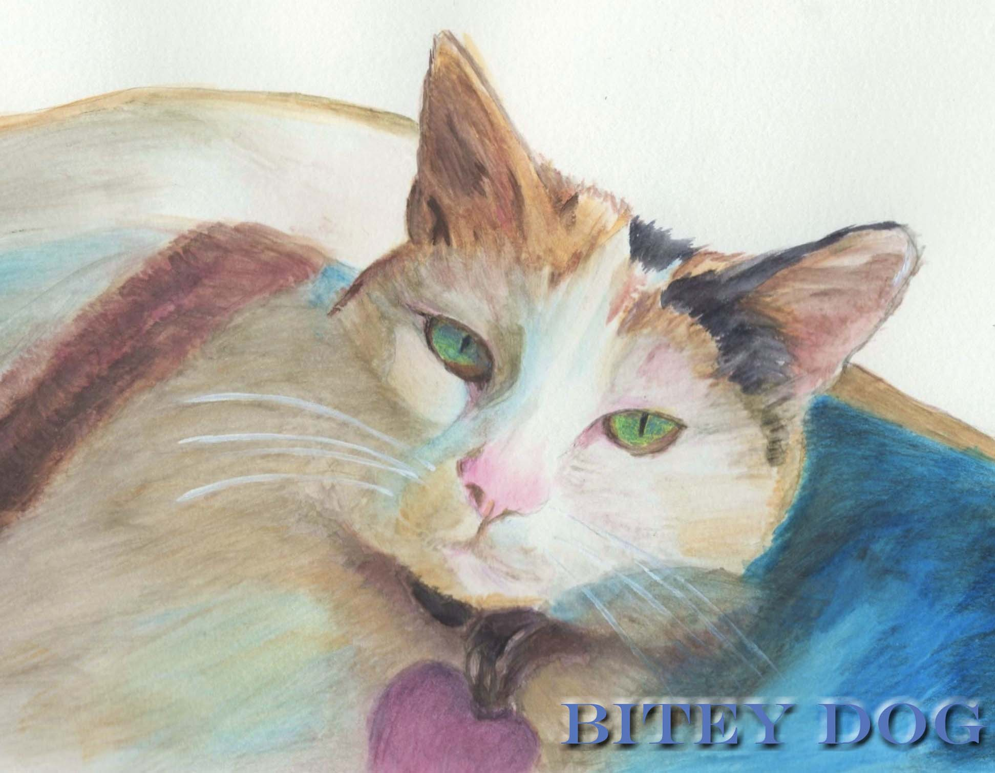 Watercolor painting of cat