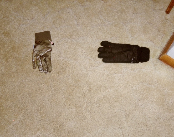 Two gloves lying on the floor