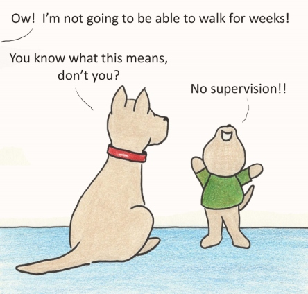 Ow! I'm not going to be able to walk for weeks! You know what this means, don't you? No supervision!