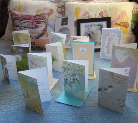 Gifts and greeting cards sent in memory of Bitey Dog Geordie