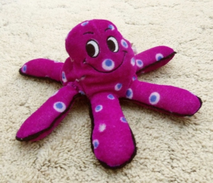 Stuffed squid with six arms. Sextopus.