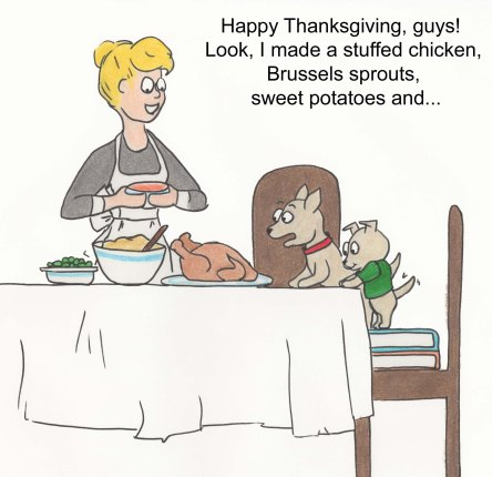 Happy Thanksgiving, guys! Look, I made stuffed chicken, Brussels sprouts, sweet potatoes and...