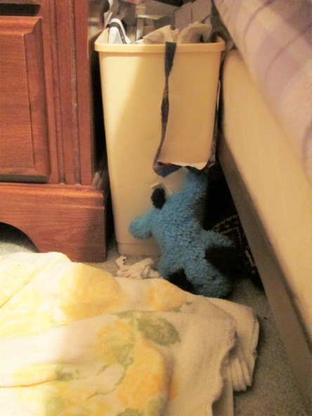 Blue Puppy gets his paw caught as he flees from raiding the trash can.
