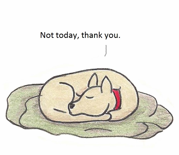 Not today, thank you/