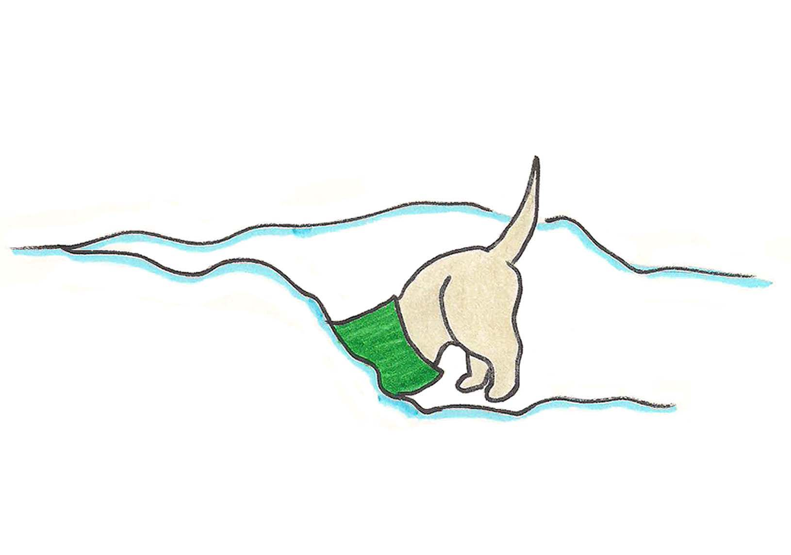 Puppy digs in fresh snow.