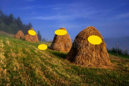 Hayricks with yellow circles.