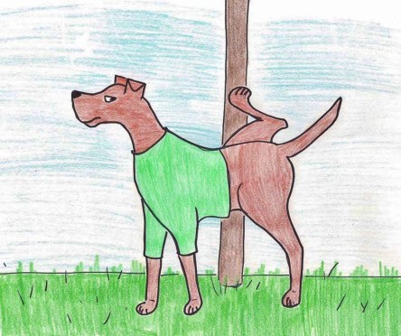 Sketch of Doberman peeing on a pole with his leg lifted.