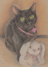 Sketch of black cat with stuffed white bunny