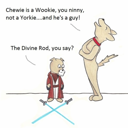 Chewie is Wookie, you ninny, not a Y orkie...and he's a guy! The Divine Rod, you say?