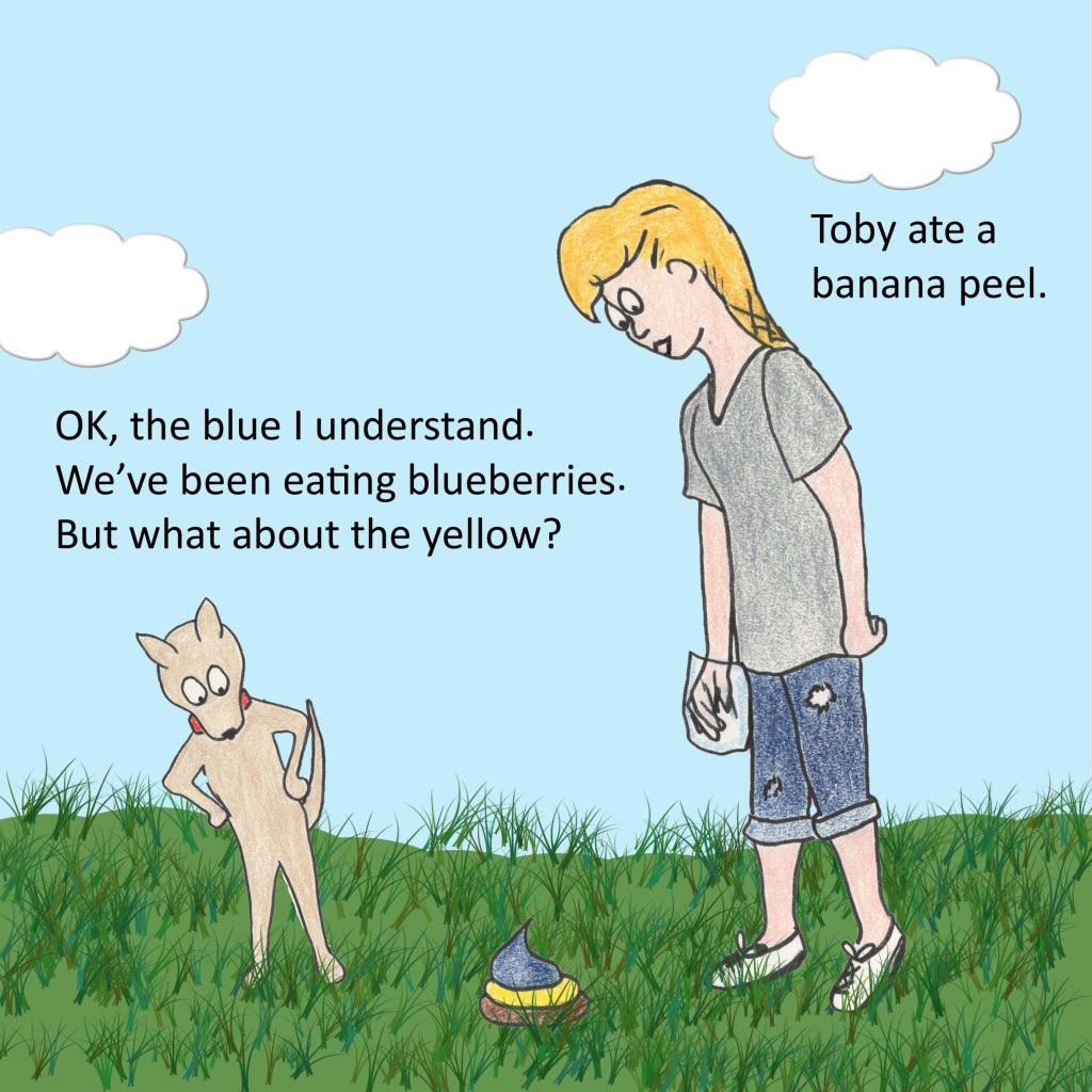 Dog:  OK, the blue I understand. We've been eating blueberries. But what about the yellow?   Woman:  Toby ate a banana peel.