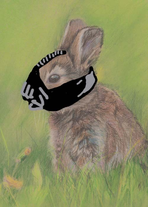 Drawing of bunny wearing Bane mask