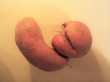 Twisted sweet potato