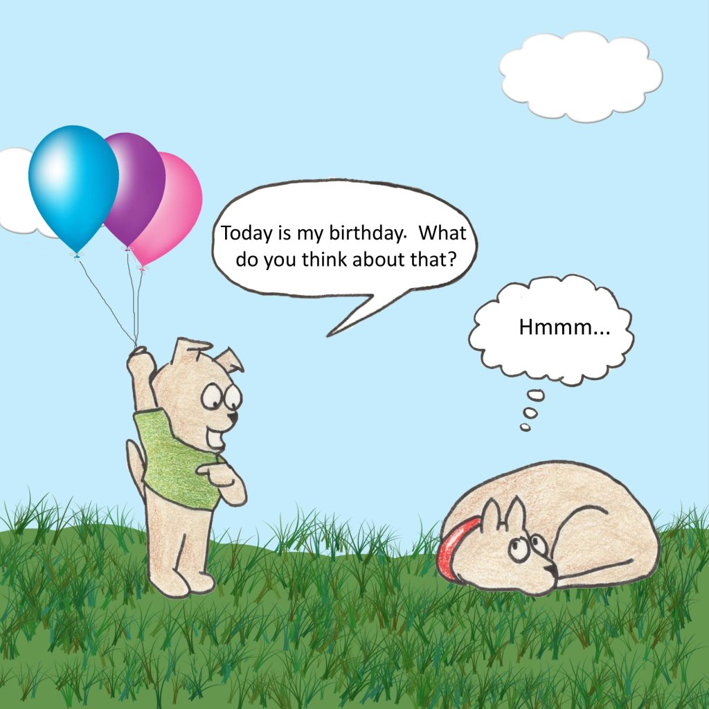 Today is my birthday. What do you think about that? Hmmm...