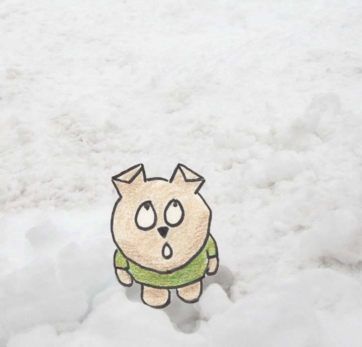 Puppy standing in deep snow, looking up in awe.