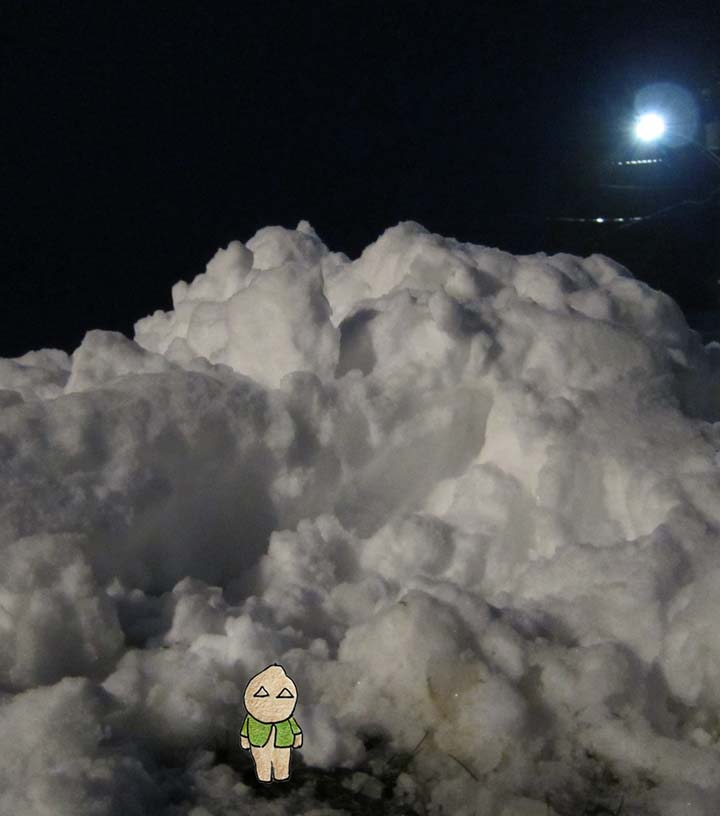 Puppy stannding at base of huge snow pile
